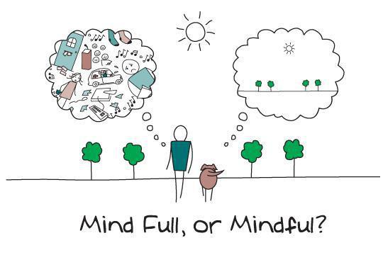 mind-full-mindful